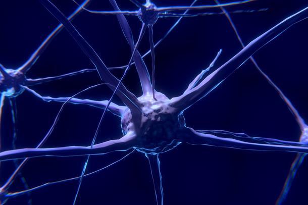 Hjernecelle